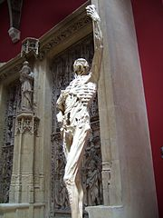 Replica of the skeleton before a large marble monument