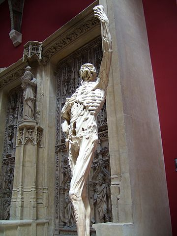 Replica at the Palais de Chaillot Le Transi moulage d'apres Ligier Richier Musee des monuments francais Paris.jpg