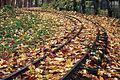 Leafing On A Railroad (8421218237).jpg