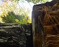 Ledges at Cuyahoga Valley National Park (10544369855).jpg