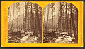 Left fork of Teton River, by Jackson, William Henry, 1843-1942.jpg