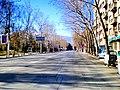 Levski Blvd. - panoramio.jpg