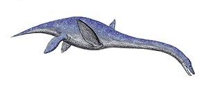 1997 in paleontology - Libonectes