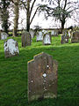 Lichen-covered headstones - geograph.org.uk - 707454.jpg