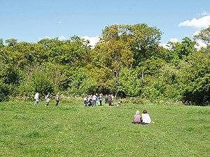 Perivale Wood - Little Elms Meadow