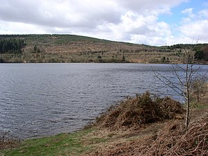 Llwyn-on Reservoir - Image: Llwyn on Reservoir geograph.org.uk 148765