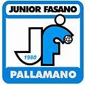 Logojunior.jpg