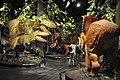 Long shot of the dinosaur diorama (20752640885).jpg