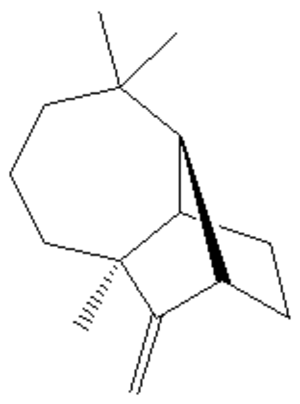 Polycyclic compound - Longifolene, a terpene natural product, and an example of a tricyclic molecule.