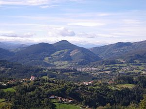 Tpico Paisaje De Los Montes Vascos Donde Destacan Bosques Pino Insigne