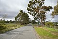 Looking down Farrer Road in Boorooma.jpg