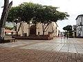 Los guayacanes de la plaza.jpg