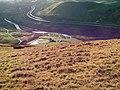 Low Carlingill Farm from Blease Fell - geograph.org.uk - 309063.jpg