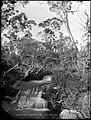 Lurline Falls, Katoomba (9013525547).jpg