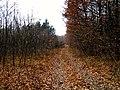 M3, Moldova - panoramio (16).jpg