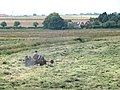 Making hay while the sun shines - geograph.org.uk - 1380204.jpg