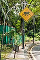 Malaysia Traffic-signs Warning-sign-33.jpg