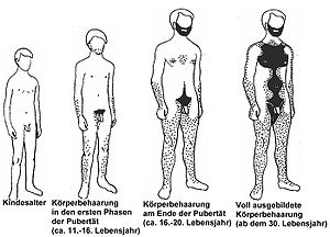 Körperbehaarung Wikipedia