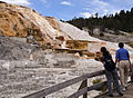 Mammoth Hot Spring Terraces, Yellowstone National Park (7780235792).jpg