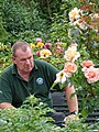 Man at Botanic Gardens - Belfast - Northern Ireland - UK (42714699015).jpg