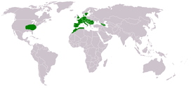 Map-World-Ornithogalum-umbellatum.png