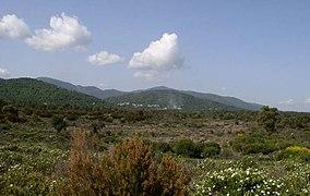 Photo de la plaine et du massif des Maures.