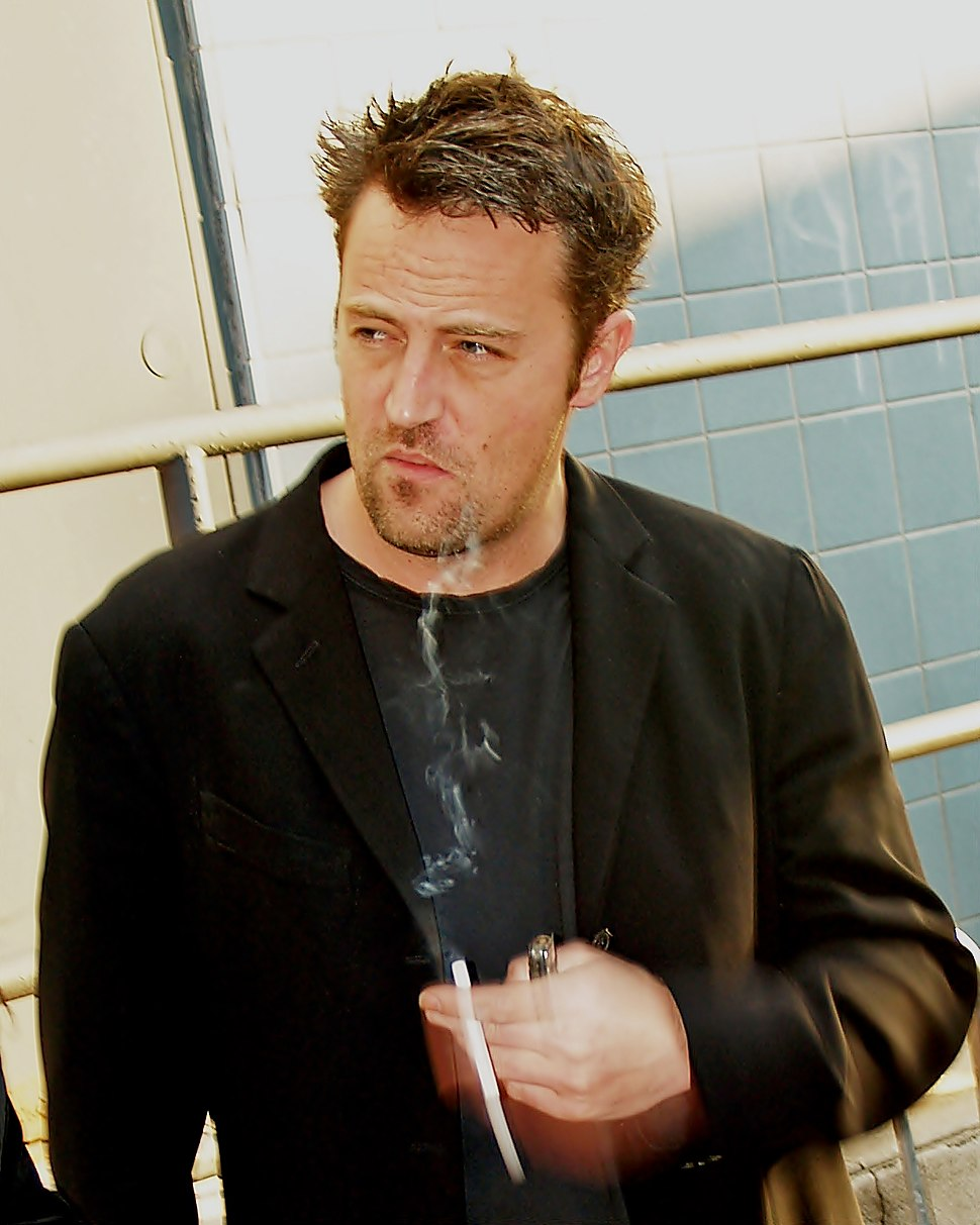 Matthew Perry by David Shankbone (cropped)
