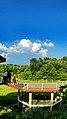 Md saiful amin botanical garden dhaka bangladesh (1).jpg