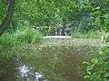 Mere Pond Weir - 1 - geograph.org.uk - 1429053.jpg