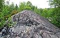 Metagraywackes (Chelmsford Formation, Paleoproterozoic, 1.74 Ga; Larchwood North outcrop, Sudbury Impact Structure, Ontario, Canada) 23 (40794918303).jpg