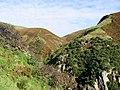 Mill Glen - geograph.org.uk - 8873.jpg