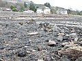 Millstones Harbour, Fairlie, North Ayrshire - view across the old harbour entrance.jpg