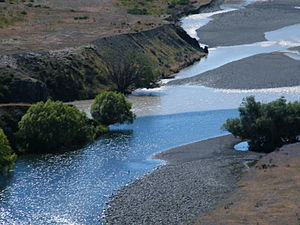 Molesworth Jan 2010.jpg