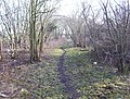 Monkland Canal - geograph.org.uk - 1470847.jpg