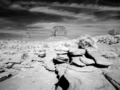 Monument Valley, Arizona LCCN2010630323.tif