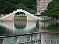 Moon Bridge at Dahu Park 大湖公園月橋 - panoramio.jpg