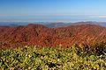 Mount Okusanpo from Mount Ogasa.jpg