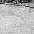 Mozaïekvloer in Kapernaum waar archeologische vondsten worden tentoongesteld aan, Bestanddeelnr 255-3030.jpg
