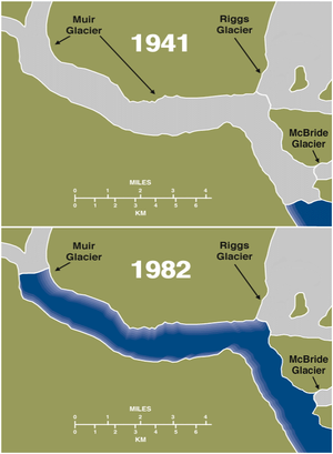 Muir Glacier - Maps showing retreat of Muir Glacier from 1941 to 1982