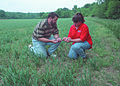 NRCSIL00020 - Illinois (4145)(NRCS Photo Gallery).jpg