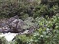 Namorona River in Ranomafana National Park 2013 4.jpg
