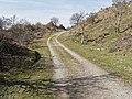 Nationaal Park Kennemerland (41370164081).jpg