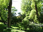 National Forestry University of Ukraine Botanic Garden (2).JPG