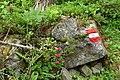 Nationalpark Hohe Tauern - Gletscherweg Innergschlöß - 06 - rot-weiß-rote Markierung.jpg