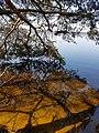 Naturschutzgebiet Großer Rußweiher 02.jpg