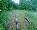 Nieczynna linia kolejowa Frombork-Tolkmicko - panoramio.jpg