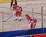Niklas Kronwall and Alexey Marchenko (25364144841).jpg
