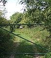 No access - Danger Keep Out - geograph.org.uk - 895228.jpg