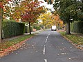 Nook Road - The Avenue (geograph 4708371).jpg