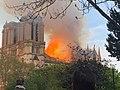 Notre-Dame de Paris en feu photo prise du Square René Viviani.jpg